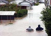 Тайфунът Наби уби девет души в Япония