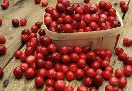 Червените боровинки предпазват от кариес