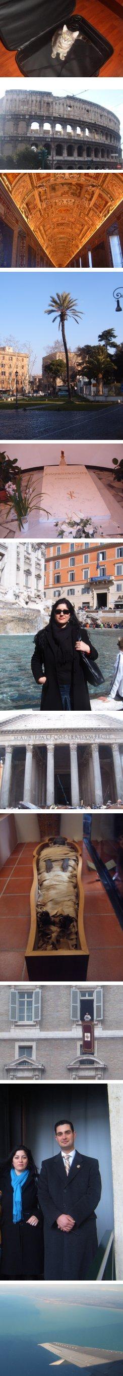 Котка в куфара към Рим