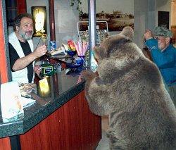 Времето сбърка екс танци-манци мечки и ги направи кукуряци