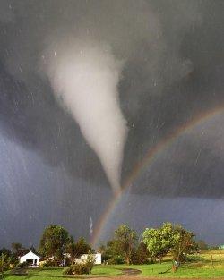 Торнадо отнесе, но и спаси бебе