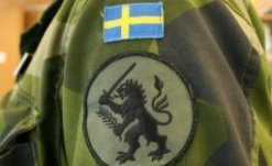 Шведската армия кастрира лъва на герба си