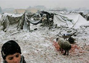 В Афганистан гинат от студ, на някои места е -30°
