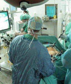 BG - първенец в износа на органи