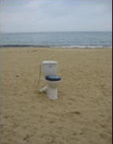 Бутат WC-тата по плажа