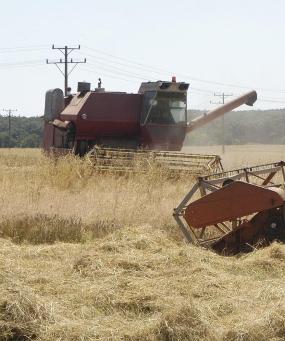 Обезщетяват земеделци, разминали се с европари несправедливо