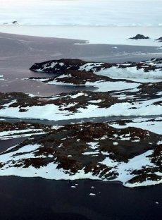 Ледовете на планетата ни се топят