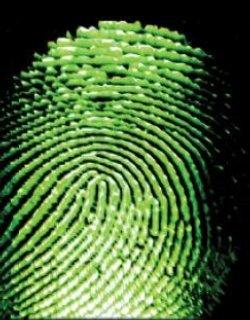 Децата до 12 г. в ЕС без отпечатъци в биометричните паспорти, БГ мисли