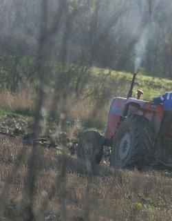 Еврокомисари от земеделието стажуват на къра