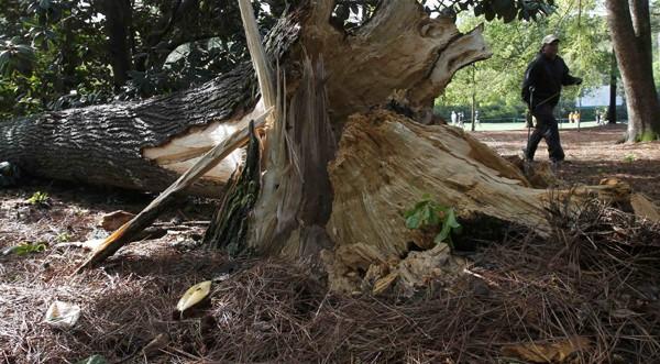 Шест жертви на бурите в Алабама и Мисисипи