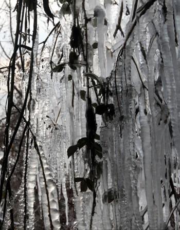 Общината отпуска чай в сибирския студ в София