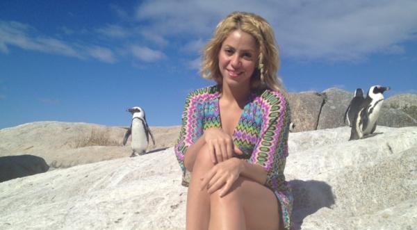 Тюлен нападна Шакира