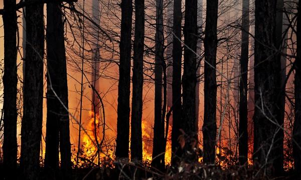 Пожари тормозят Кюстендилска област