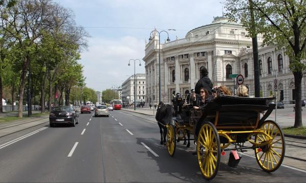 Половин милион евро за добри обноски дава Виена