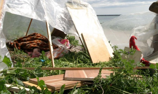 Трите деца, мизерстващи в гората, просили в Слънчев бряг