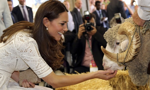 Уилям и Кейт гледаха как стрижат овце в Австралия