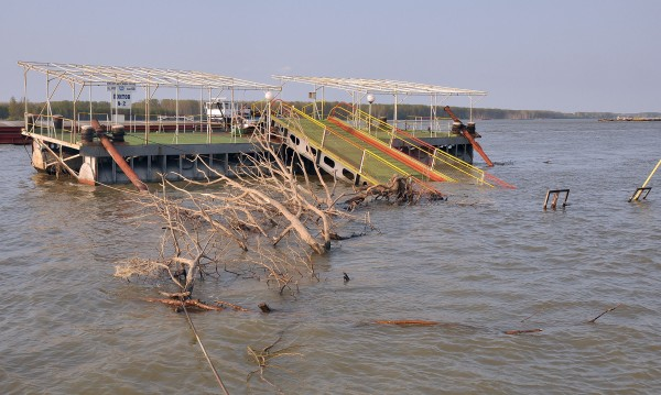 Нивото на река Дунав ще продължи да се покачва