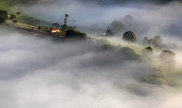 Създадоха мъгла за ядене
