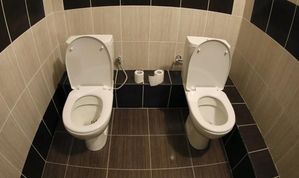 Изобретиха революционна отпушвачка на тоалетни