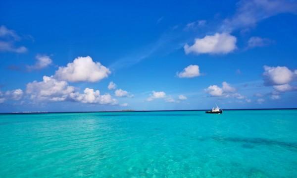 Най-чистите води в света. Време е за плаж!