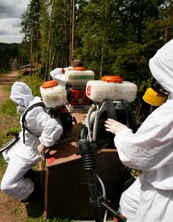 Пестициди от времето на прародителите ни морят нас