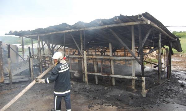 400 бали слама и 7 тона царевица изгоряха в пожар