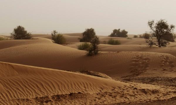 Сахара е по-древна, отколкото се смяташе досега