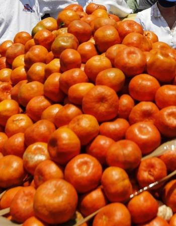 Консумацията на мандарини помага на костите и сърцето