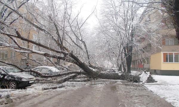 Екипи на ЧЕЗ възстановяват тока в части от Западна България