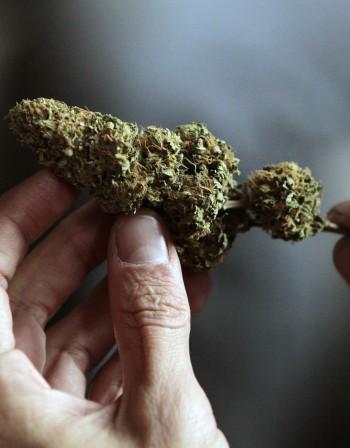 Може ли марихуаната да облекчи депресивните състояния?