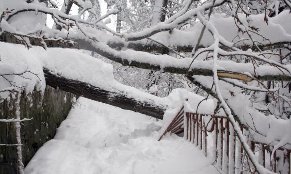 Снежен капан държи в плен половин България