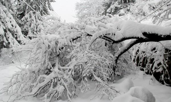 Снегът спря телефоните на Спешна помощ на много места