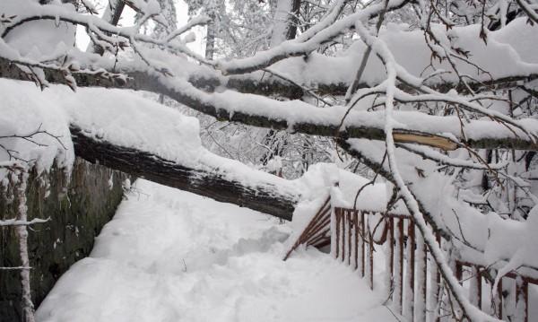615 селища без ток, зимата най-люта в Смолян и Кърджали