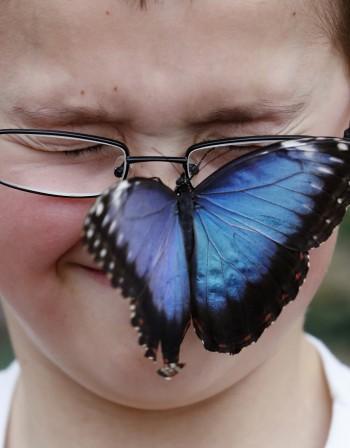Цветен свят: създадоха очила за далтонисти