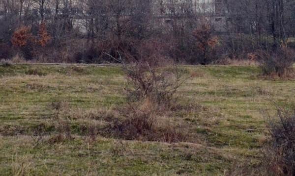68 боеприпаси са открити при разчистване на района на завода в Иганово