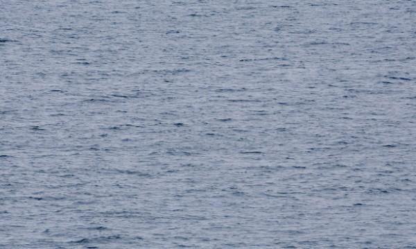 Руски риболовен траулер потъна край Канарските острови
