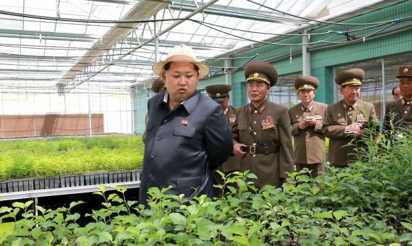 """Глад! Северна Корея пред """"хранителна несигурност"""""""