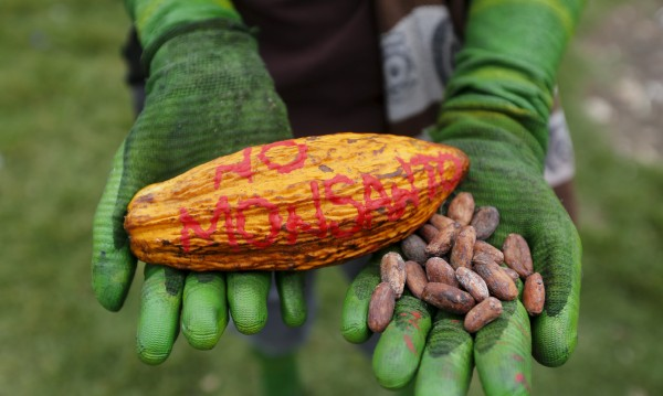 Хърватия категорична: Трябва да остане свободна от ГМО