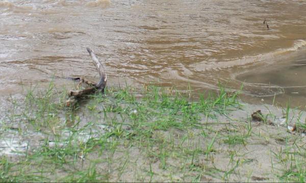 МОСВ: Възможни са краткотрайни повишения на някои реки
