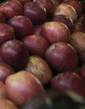 Храни, полезни срещу астма и алергия