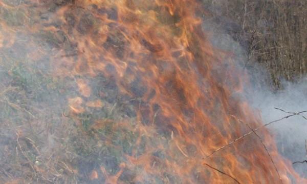 Пожар гори край Рилския манастир
