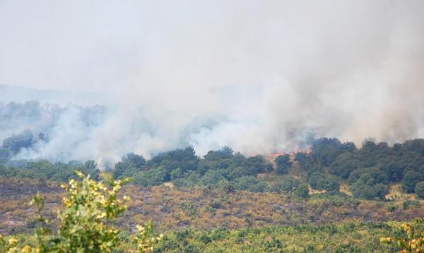 Локализираха пожара край хасковското село Брягово