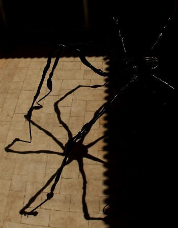 Какво да правим при ухапване от паяк?