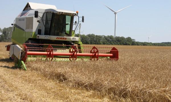 Очаква се лоша година за зърнопроизводителите