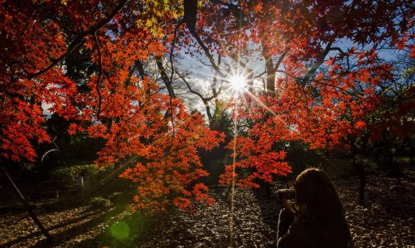 Октомври: Кучи студ в началото, циганско лято в края