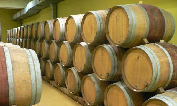 Производители на вино край Варна разчитат на летния сезон за реализация на продукцията