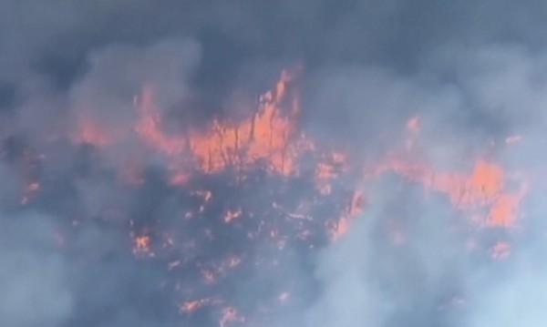 Огнен ад изпепели 100 жилища в Австралия
