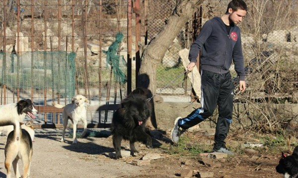 Приятели на убития Тодор: Убийците му да бъдат наказани!