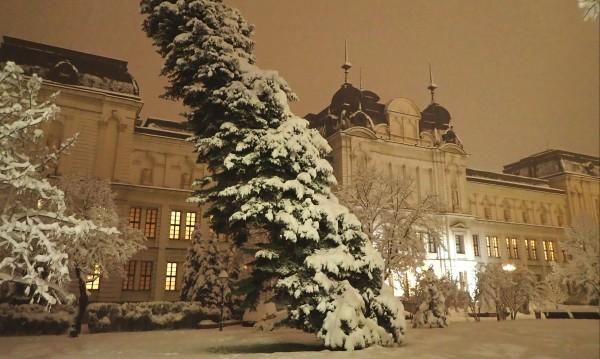 30 см сняг в София, обстановката е усложнена