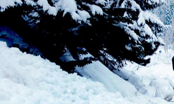 Туристи предизвикаха лавина в Пирин над Банско